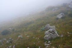 Ομίχλη φθινοπώρου στους λόφους Στοκ Εικόνα