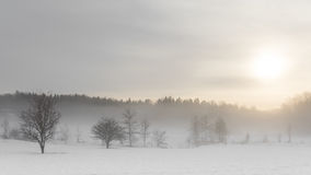 Ομίχλη χιονιού του χειμώνα, Στοκχόλμη, Σουηδία στοκ φωτογραφία με δικαίωμα ελεύθερης χρήσης