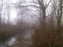 ομίχλη Στοκ Εικόνες