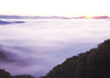 ομίχλη Στοκ εικόνες με δικαίωμα ελεύθερης χρήσης
