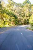 Ομαλός δρόμος σε μια ταϊλανδική ζούγκλα στοκ εικόνα