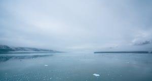 Ομιχλώδες από την Αλάσκα τοπίο Στοκ Φωτογραφία