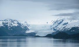 Ομιχλώδες από την Αλάσκα τοπίο Στοκ φωτογραφίες με δικαίωμα ελεύθερης χρήσης