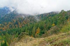 ομιχλώδες βουνό Στοκ φωτογραφίες με δικαίωμα ελεύθερης χρήσης