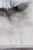 ομιχλώδες μονοπάτι Στοκ εικόνες με δικαίωμα ελεύθερης χρήσης