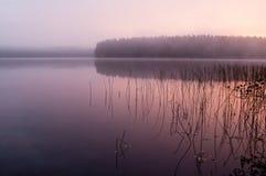 Ομιχλώδες, ξύλινο φθινόπωρο λιμνών, το ήρεμο πρωί Στοκ Φωτογραφία