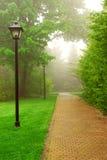 ομιχλώδες πάρκο Στοκ Εικόνες