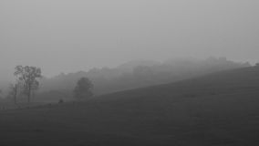 ομιχλώδες πρωί λόφων στοκ φωτογραφία με δικαίωμα ελεύθερης χρήσης