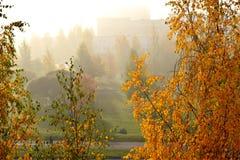 Ομιχλώδες πρωί φθινοπώρου στην πόλη στοκ εικόνα