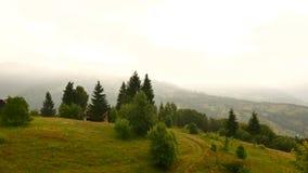 Ομιχλώδες τοπίο πρωινού στα Καρπάθια βουνά Προορισμοί και φύση της Ουκρανίας απόθεμα βίντεο