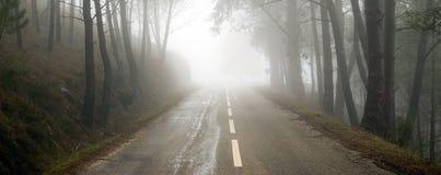 ομιχλώδης δρόμος Στοκ Φωτογραφίες