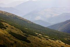 Ομιχλώδης θερινή σκηνή στα βουνά στοκ εικόνες