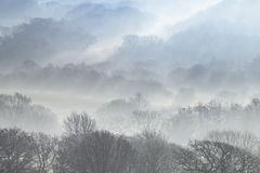 Ομιχλώδης κοιλάδα στη νότια Ουαλία, UK στοκ φωτογραφία με δικαίωμα ελεύθερης χρήσης