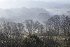 Ομιχλώδης κοιλάδα στη νότια Ουαλία, UK στοκ εικόνες