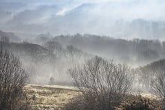 Ομιχλώδης κοιλάδα στη νότια Ουαλία, UK στοκ φωτογραφίες με δικαίωμα ελεύθερης χρήσης