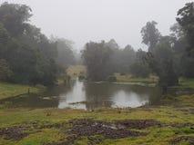 ομιχλώδης λίμνη στοκ φωτογραφίες με δικαίωμα ελεύθερης χρήσης