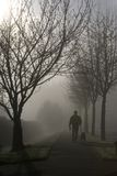 ομιχλώδης περίπατος πρωι& Στοκ φωτογραφίες με δικαίωμα ελεύθερης χρήσης
