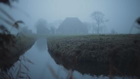 Ομιχλώδες ολλανδικό αγρόκτημα σε ένα πράσινο και υγρό τοπίο λιβαδιών το χειμώνα Με τον κάλαμο στο πρώτο πλάνο απόθεμα βίντεο