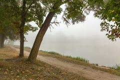 Ομιχλώδες πάρκο κοντά στη λίμνη Στοκ εικόνες με δικαίωμα ελεύθερης χρήσης