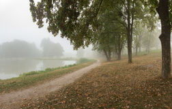 Ομιχλώδες πάρκο κοντά στη λίμνη Στοκ Εικόνα