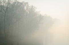 ομιχλώδες πάρκο πρωινού Στοκ Εικόνες