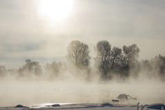 Ομιχλώδες παγωμένο πρωί χειμερινών τοπίων Στοκ Εικόνες