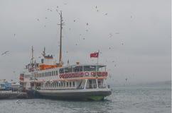 Ομιχλώδες πρωί, που περιμένει στους επιβάτες πορθμείων και seagulls χορού Στοκ φωτογραφία με δικαίωμα ελεύθερης χρήσης
