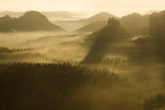 Ομιχλώδες πρωί σε μια Τσεχία Οι χρυσές ακτίνες επάνω λάμπουν στα δασικά ξημερώματα υποβάθρου φύσης Στοκ Εικόνες
