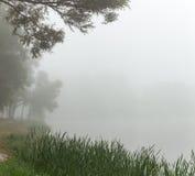 Ομιχλώδης λίμνη το πρωί Στοκ φωτογραφία με δικαίωμα ελεύθερης χρήσης