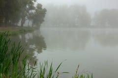 Ομιχλώδης λίμνη το πρωί Στοκ εικόνα με δικαίωμα ελεύθερης χρήσης