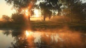 Ομιχλώδης αυγή πέρα από έναν όμορφο ποταμό άνοιξη απόθεμα βίντεο