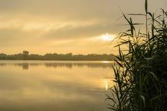 Ομιχλώδης αύξηση πέρα από τη λίμνη και έναν κάλαμο Στοκ φωτογραφία με δικαίωμα ελεύθερης χρήσης