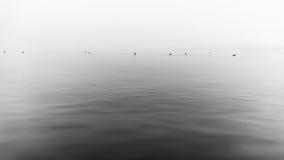 Ομιχλώδης γκρίζα λίμνη Στοκ Φωτογραφίες