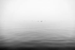 Ομιχλώδης γκρίζα λίμνη Στοκ Εικόνα