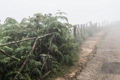 Ομιχλώδης καιρός σε Kochi στοκ φωτογραφίες