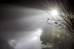 Ομιχλώδης οδός τη νύχτα Στοκ φωτογραφία με δικαίωμα ελεύθερης χρήσης