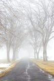 Ομιχλώδης δρόμος νεκροταφείων Στοκ Εικόνες