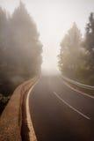 Ομιχλώδης δρόμος στο δάσος, οδός στο misty δάσος στοκ φωτογραφία με δικαίωμα ελεύθερης χρήσης