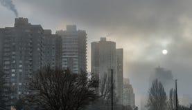 ομιχλώδης χειμώνας πρωιν&omic στοκ φωτογραφία με δικαίωμα ελεύθερης χρήσης