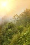 Ομιχλώδης όψη στοκ φωτογραφία με δικαίωμα ελεύθερης χρήσης