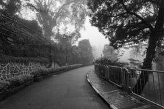 Ομιχλώδης misty οδική ένδειξη που συχνάζεται σε γραπτό Στοκ εικόνες με δικαίωμα ελεύθερης χρήσης