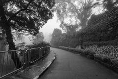 Ομιχλώδης misty οδική ένδειξη που συχνάζεται σε γραπτό Στοκ φωτογραφία με δικαίωμα ελεύθερης χρήσης