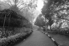 Ομιχλώδης misty οδική ένδειξη που συχνάζεται σε γραπτό Στοκ Εικόνες