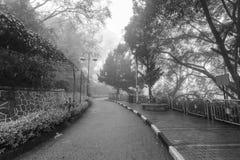 Ομιχλώδης misty οδική ένδειξη που συχνάζεται σε γραπτό Στοκ Φωτογραφία
