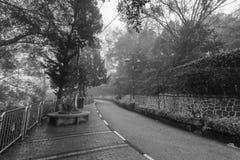 Ομιχλώδης misty οδική ένδειξη που συχνάζεται Στοκ φωτογραφίες με δικαίωμα ελεύθερης χρήσης
