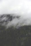 Ομιχλώδη σύννεφα που αυξάνονται από το αλπικό δάσος βουνών Στοκ Φωτογραφίες