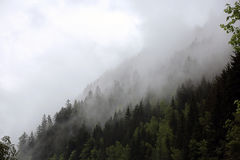 Ομιχλώδη σύννεφα που αυξάνονται από το αλπικό δάσος βουνών Στοκ φωτογραφίες με δικαίωμα ελεύθερης χρήσης