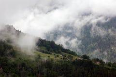 Ομιχλώδη σύννεφα που αυξάνονται από το αλπικό δάσος βουνών Στοκ εικόνα με δικαίωμα ελεύθερης χρήσης