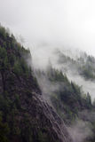 Ομιχλώδη σύννεφα που αυξάνονται από το αλπικό δάσος βουνών Στοκ φωτογραφία με δικαίωμα ελεύθερης χρήσης
