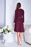 Ομορφιάς προκλητικό γυναικών ιματισμού κόκκινο φόρεμα μόδας καταλόγων μοντέρνο Στοκ φωτογραφία με δικαίωμα ελεύθερης χρήσης